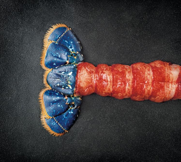 homard decortique